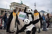 """Im Rahmen eines Weltweiten Klima-Aktionstages demonstrierten am Freitag den 29. November 2019 in Deutschland 630.000 Menschen gegen die Klimapolitik der Bundesregierung. Sie forderten, dass endlich eine Klimapolitik gemacht wird, die wenigstens die Klimaziele des Parisabkommen zur Senkung des CO2-Ausstoss einhaelt und die Erderwaermung auf plus 1,5 Grad beschraenkt, wovon die Politik jedoch weit entfernt ist. Aufgerufen zu den Demonstrationen hatte """"Fridays for Future"""".<br /> In Berlin demonstrierten ca. 50.000 Menschen und zogen mit einer Demonstration vom Brandenburger Tor durch die Innenstadt.<br /> Im Bild: Klimaaktivisten haben sich als Pinguine und Pandabaeren verkleidet.<br /> 29.11.2019, Berlin<br /> Copyright: Christian-Ditsch.de<br /> [Inhaltsveraendernde Manipulation des Fotos nur nach ausdruecklicher Genehmigung des Fotografen. Vereinbarungen ueber Abtretung von Persoenlichkeitsrechten/Model Release der abgebildeten Person/Personen liegen nicht vor. NO MODEL RELEASE! Nur fuer Redaktionelle Zwecke. Don't publish without copyright Christian-Ditsch.de, Veroeffentlichung nur mit Fotografennennung, sowie gegen Honorar, MwSt. und Beleg. Konto: I N G - D i B a, IBAN DE58500105175400192269, BIC INGDDEFFXXX, Kontakt: post@christian-ditsch.de<br /> Bei der Bearbeitung der Dateiinformationen darf die Urheberkennzeichnung in den EXIF- und  IPTC-Daten nicht entfernt werden, diese sind in digitalen Medien nach §95c UrhG rechtlich geschuetzt. Der Urhebervermerk wird gemaess §13 UrhG verlangt.]"""