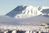 ALASKA COLD WAVE