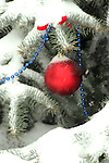 A Pine Tree outside decorated by ornaments