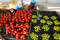 BURKINA FASO, Provinz Poni, Gaoua, market, woman sells vegetables like chillies, tomatos / Markt, Verkauf Gemuese, Tomate, Chillies