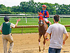 Pachanga Party winning at Delaware Park on 7/7/16