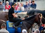 LOUISVILLE, KENTUCKY - MAY 02: Exercise rider Humberto Gomez flashes a smile after taking McKinzie out for a gallop at Churchill Downs in Louisville, Kentucky on May 2, 2019. John Voorhees/Eclipse Sportswire/CSM