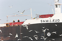 Crew members of the cargo ship M/V Sam Laud stand on deck as the ship enters Cleveland Harbor from the Cuyahoga River.
