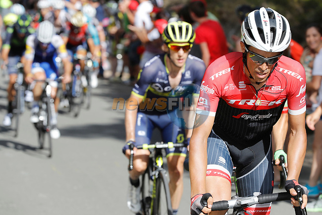 Alberto Contador (ESP) Trek-Segafredo attacks on the 22% Alto Xorret de Cat&iacute; climb during Stage 8 of the 2017 La Vuelta, running 199.5km from Hell&iacute;n to Xorret de Cat&iacute;. Costa Blanca Interior, Spain. 26th August 2017.<br /> Picture: Unipublic/&copy;photogomezsport | Cyclefile<br /> <br /> <br /> All photos usage must carry mandatory copyright credit (&copy; Cyclefile | Unipublic/&copy;photogomezsport)