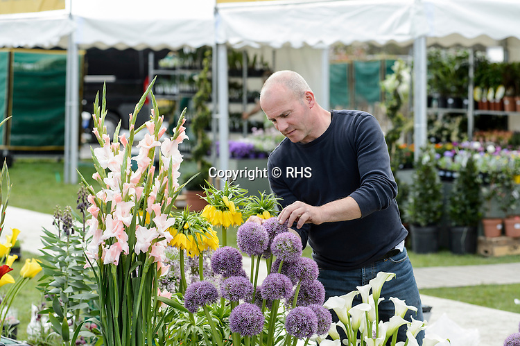 Bert Blankers from Petrichor Bulb Specialists in the Floral Marquee at the RHS Show Cardiff 2016.