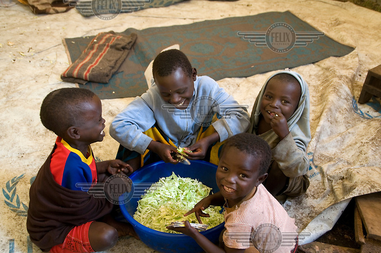 Children preparing cabbage for supper at the Kibati IDP (Internally Displaced Persons) camp.
