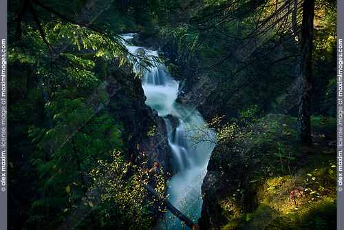 Little Qualicum Falls Provincial Park beautiful cascade waterfall autumn nature scenery, Little Qualicum River, Vancouver Island, BC, Canada Image © MaximImages, License at https://www.maximimages.com