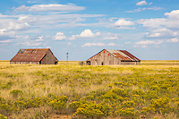 Traveling the back roads, near Roy, New Mexico, we came upon this rural scene.  Once it was certainly a bustling farm or ranch with proud, hard working owners.  Now, in stark contrast, it stands idle and in disrepair. No doubt these past owners would have been happy to receive such abundant rain as New Mexico received this past year.  Possibly it was a drought which sent these past owners packing.