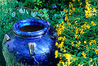 A blue pot and a yellow flowered Tagetes make a colorful combo in the San Antonio,Texas demonstration at the Antique Rose Emporium created by owner  Mike Shoup.