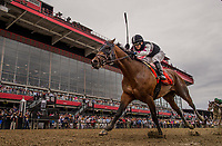 BALTIMORE, MD - MAY 20:  Recruiting Ready #7 ridden by Horacio Karamanos wins the Chick Lang Stakes at Pimlico Race Course on May 20, 2017 in Baltimore, Maryland. (Photo by Alex Evers/Eclipse Sportswire/Getty Images)