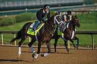 Verrazano, trained by Todd Pletcher, during morning workouts for the Kentucky Derby at Churchill Downs in Louisville, Kentucky on April 30, 2013.