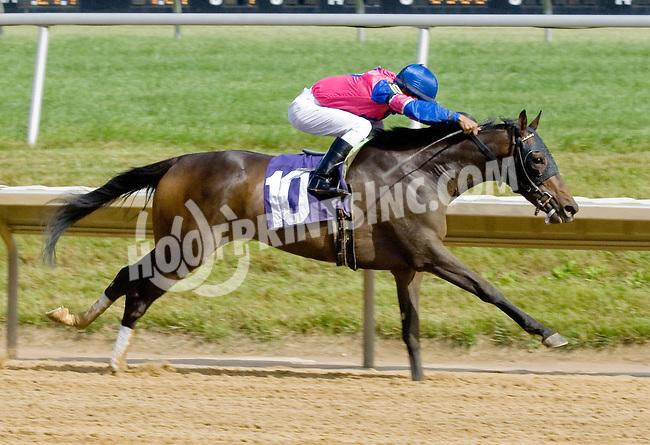 Malibu Yankee winning at Delaware Park on 6/13/12