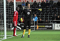 ATTENTION SPORTS PICTURE DESK<br /> Pictured: David James goalkeeper for Bristol<br /> Re: npower Championship, Swansea City FC v Bristol City Football Club at the Liberty Stadium, south Wales. Wednesday 10 November 2010