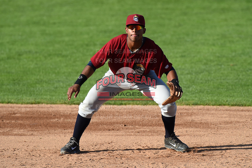 Mahoning Valley Scrappers catcher Juan De La Cruz (24) during a game against the Jamestown Jammers on June 15, 2014 at Russell Diethrick Park in Jamestown, New York.  Jamestown defeated Mahoning Valley 9-4.  (Mike Janes/Four Seam Images)