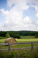 Beautiful pastoral landscapes abound on the outskirts of Chapel Hill.  This land is currently being developed into a park.