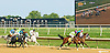 arabians first time by the grandstand at Delaware Park on 8/29/15