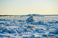 walks along the frozen Delaware Bay near the SS Atlantus sunken ship Friday, January 05, 2018 in Cape May Point, New Jersey. (Photo by William Thomas Cain/Cain Images)