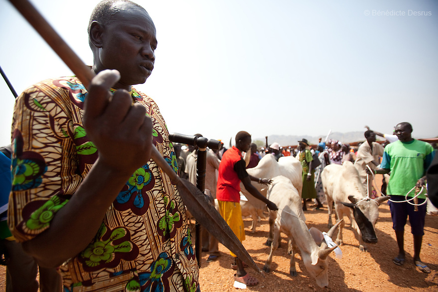 9 december 2010 - Juba, South Sudan - Southern Sudanese citizens and spiritual leaders prepare a bull to be slaughtered in a ritual for a peacefull separation during a rally in support of the independence referendum in Juba, South Sudan. According to South Sudanese officials, more than 2.8 million people have registered to vote in the referendum. The referendum on whether the oil-producing region should declare independence, scheduled for Jan. 9, is the climax of a 2005 peace deal that ended decades of north-south conflict - Africa's longest civil war that was fought over ethnicity, religion, ideology and oil and that killed 2 million people. Photo credit: Benedicte Desrus