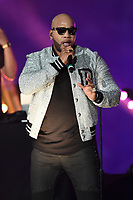 MIAMI GARDENS, FL - DECEMBER 29: Flo Rida performs during the Half Time Show at the College Football Playoff Semifinal game at the 2018 Capital One Orange Bowl on December 29, 2018 at the Hard Rock Stadium in Miami Gardens, Florida. <br /> CAP/MPI04<br /> &copy;MPI04/Capital Pictures