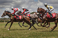 Horses rush out of the gates with Dennis Kiprotich in the  lead,  at Ngong Racecourse in Nairobi, Kenya. March 17, 2013 Photo: Brendan Bannon