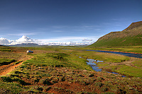 Atlantic Salmon River Svalbardsa, Thistilfjordur North East Iceland