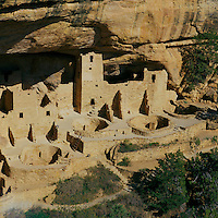 Mesa Verde National Park, Colorado, USA - Cliff Palace, an Ancestral Puebloan aka Anasazi Cliff Dwelling and Ruins, Kivas in mid-ground