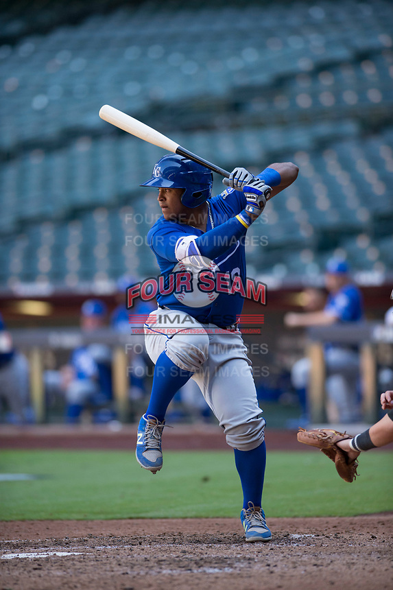 Kansas City Royals catcher Meibrys Viloria (19) at bat during an Instructional League game against the Arizona Diamondbacks at Chase Field on October 14, 2017 in Scottsdale, Arizona. (Zachary Lucy/Four Seam Images)
