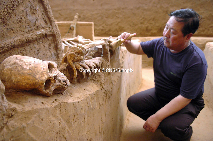 Ancient Chinese chariots dating back to the Sang Dynasty (3300 years ago) are uncovered in Anyang, Henan Province. The chariots are the oldest and best preserved ever discovered. The chariots were buried with their horses and grooms who were sacrificed at burial.