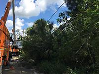 2017 FPL Hurricane Irma restoration in Palm Beach, Fla. on Sept. 13, 2017.