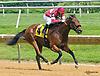 Thealkascraftygirl winning at Delaware Park on 6/22/17