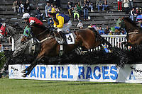 2015 Fair Hill Races