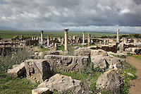 Ruined sculpted stone blocks with the House of Ephebe behind, Volubilis, Northern Morocco. Volubilis was founded in the 3rd century BC by the Phoenicians and was a Roman settlement from the 1st century AD. Volubilis was a thriving Roman olive growing town until 280 AD and was settled until the 11th century. The buildings were largely destroyed by an earthquake in the 18th century and have since been excavated and partly restored. Volubilis was listed as a UNESCO World Heritage Site in 1997. Picture by Manuel Cohen