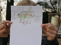 Mädchen, Kind hat Heuschrecke abgemalt , die Heuschrecke saß auf dem Blatt Papier, fertige Zeichnung mit Beschriftung, Roesels Beißschrecke, Metrioptera roeselii