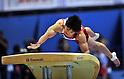 Koji Yamamuro (JPN), JULY 2nd, 2011 - Artistic Gymnastics : JAPAN CUP 2011, Men's Team competition at Tokyo Metropolitan gymnasium, Tokyo, Japan. .(Photo by Atsushi Tomura/AFLO SPORT) [1035]..