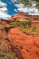 731350265 the fremont river flows hard below the castle formation after a heavy summer rainstorm in capitol reef national park utah united states