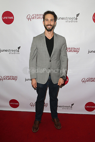 """LOS ANGELES, CA - NOVEMBER 7: Nathan Haugaard, at Premiere of Lifetime's """"Christmas Harmony"""" at Harmony Gold Theatre in Los Angeles, California on November 7, 2018. Credit: Faye Sadou/MediaPunch"""