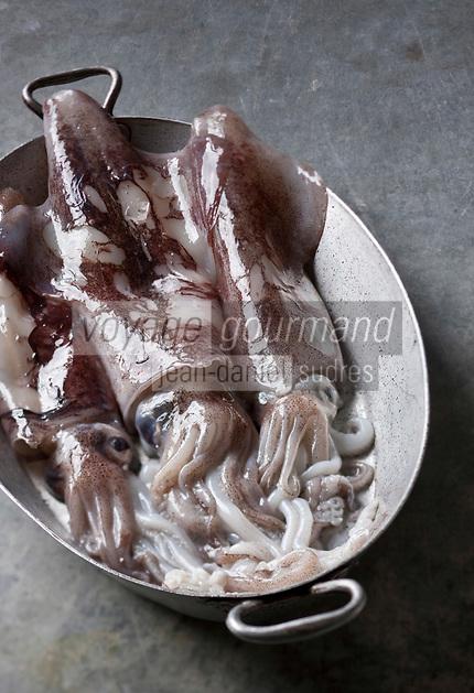Gastronomie générale/ Calmar  - Stylisme : Valérie LHOMME