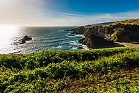 Rugged coastline along State Highway 1, near Elk, Mendocino County, California USA.