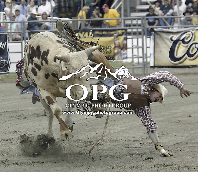 29 August, 2004: PRCA Rodeo Bull Rider Beau Hill ranked 19th in the world riding the bull Night Vision gets tossed during the PRCA 2004 Extreme Bulls competition in Bremerton, WA.