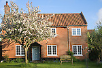 Property released red brick detached, house with apple tree blossom in the   garden, Shottisham, Suffolk, England