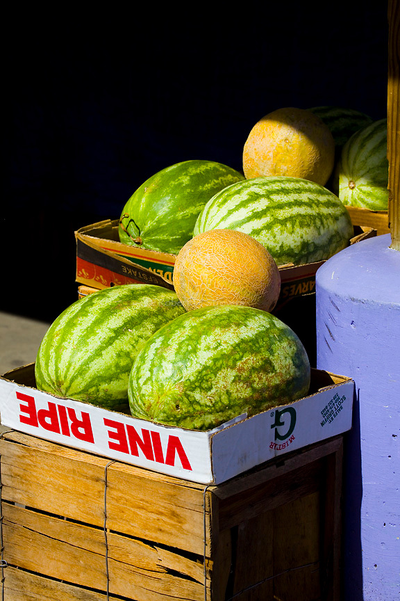 Fresh Food - Melons