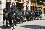 Foto: VidiPhoto<br /> <br /> APELDOORN &ndash; Met de grootst mogelijke voorzichtigheid worden donderdag historische en kostbare rijtuigen uitgeladen op Paleis Het Loo. Daarna volgt een poetsbeurt door personeel van het Koninklijk Staldepartement. De koninklijke rijtuigen maken dit weekend verschillende keren per dag een rit over het Stallenplein van het paleis in Apeldoorn. Ondertussen wordt er door koetsiers en paardenverzorgers al flink geoefend met paarden en rijtuigen. Voor het evenement is speciale toestemming gegeven door Koning Willem-Alexander, de eigenaar van de collectie. Normaal gesproken staan paarden en rijtuigen namelijk in Den Haag en worden ze alleen, meestijds individueel, gebruikt bij bijzondere gelegenheden. Dit weekend is het grootste deel van de collectie rijdend te zien in Apeldoorn. Bezoekers krijgen bovendien een kijkje achter de schermen, waarbij paarden, auto&rsquo;s en rijtuigen van Koning Willem-Alexander van dichtbij mogen worden bekeken. Pronkstukken bij de rijtuigen zijn de Gala Landauer met vierspan, de Gala Berline met tweespan en een Brik. Op de aanspanplaats vindt het verzorgen en inspannen van de koninklijke paarden plaats.