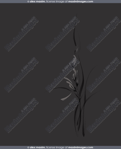 Beautiful intricate gray orchid flowers on dark gray black background Japanese Zen painting based artistic floral design illustration in modern contrast colors