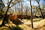 Image Ref: CA733<br />