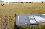 Information panel Woodhenge neolithic prehistoric henge site, near Amesbury, Wiltshire, England, UK - archaeologist Maud Cunningham