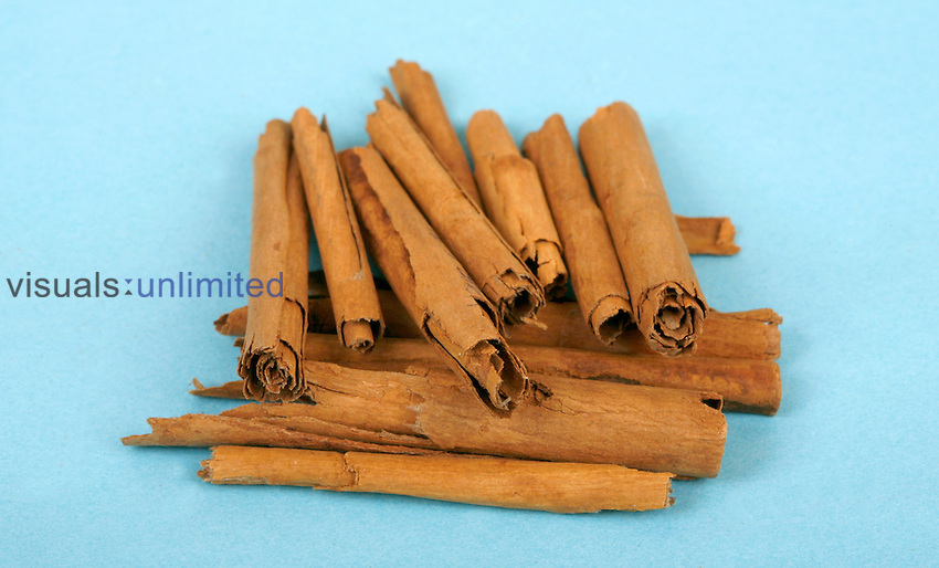 Cinnamon sticks as a herbal medicine have been traditionally been used to treat toothache and fight bad breath, to stave off the common cold, and aid digestion Royalty Free