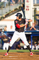 Kelly Dugan (11) of the Reading Fightin Phils at bat against the Akron Rubber Ducks at FirstEnergy Stadium on June 19, 2014 in Wappingers Falls, New York.  The Rubber Ducks defeated the Fightin Phils 3-2.  (Brian Westerholt/Four Seam Images)