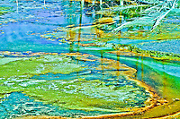 """""""PRIMORDIAL OOZE""""<br /> <br /> (1) 43 X 30 canvas print $2,500<br /> (1) 36 X 24 canvas print $2,000<br /> <br /> 17 x 12.5 signed paper print<br /> 1/50 $95.00<br /> <br /> <br /> <br /> <br /> <br /> <br /> Primordial ooze emanating from the geysers along Fire Hole Drive in Yellowstone National Park"""