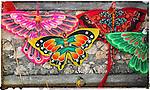 Kites of Bali