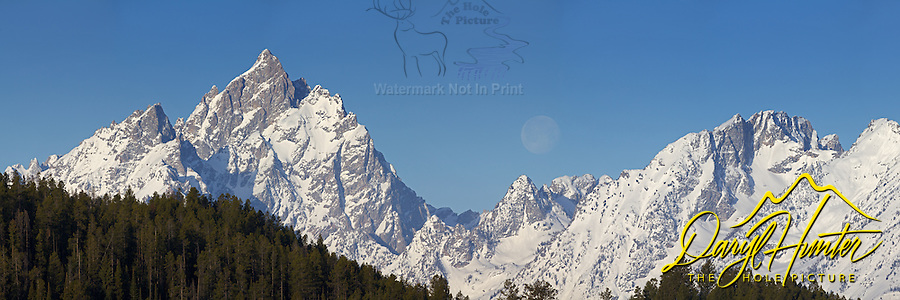 Moon over Grand Tetons. This landscape is a 256 megabite 3X1 panorama and can be printed  18 inches X 54 inches at 300 DPI and or larger with less resolution.